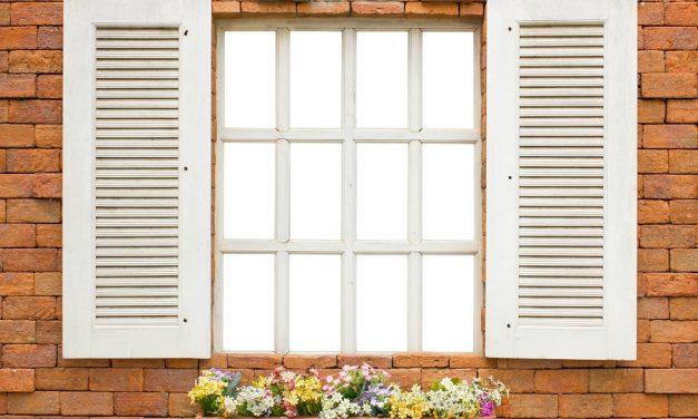 Im Falschen Fenster by Carl Palmer